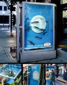 090911 Fisch Franke