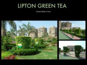 110911 Lipton Greentea