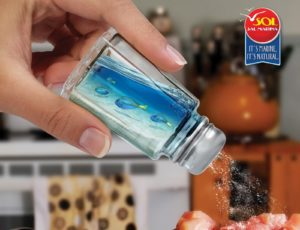 051211 salsol fish